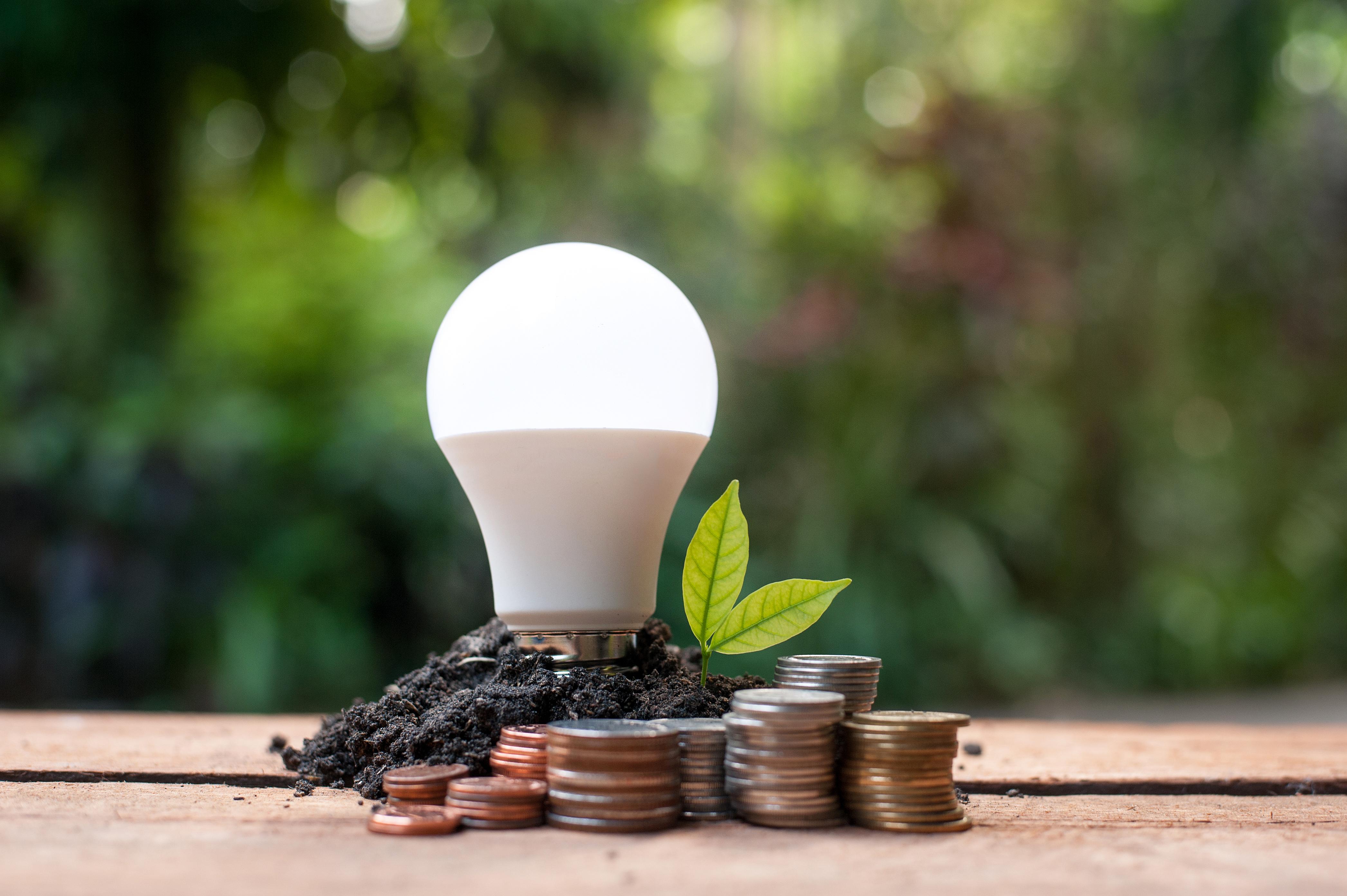 Come risparmiare energia elettrica: 5 regole per un risparmio a prova di ambiente (e di portafogli!)